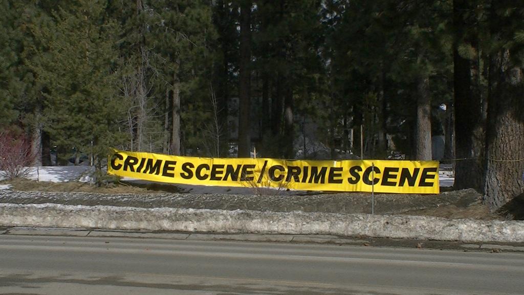 crime scene profiling essay
